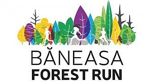 Baneasa Forest Run - 24 martie 2019