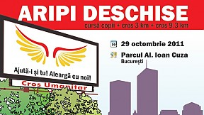 Cros Aripi Deschise ~ 2011