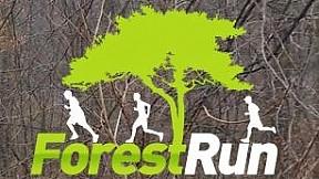 Forest Run - Et. 5 Cernica ~ 2014