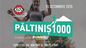 Paltinis 1000 ~ 2016